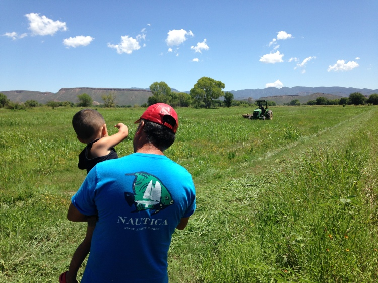 My father showing my nephew a tractor while in his fields.