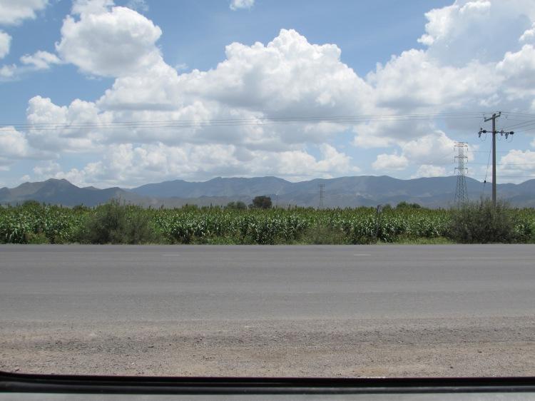 Mexico 2014 077